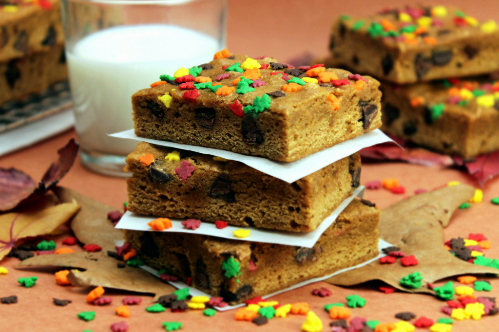 Chocolate Chip Pumpkin Blondies